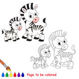 Zebra And Her Baby Cartoon. Page To Be Colored. Stock Photos