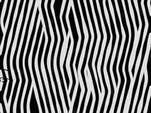 Zebra animal da textura da pele Imagens de Stock