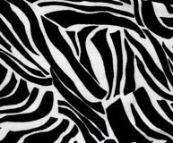 Zebra animal print for backgrounds and textures Stock Images