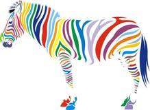 Zebra animal Royalty Free Stock Photos