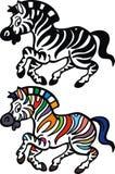Zebra animal Stock Images