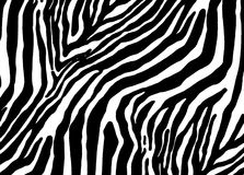 Zebra as pattern Royalty Free Stock Photography