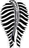 Zebra ass Stock Images