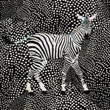 Zebra astratta nella savana, modo di tiraggio Fotografia Stock