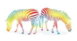 Zebra1207b Royalty Free Stock Images