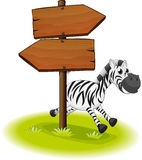 A zebra at the back of a wooden arrow board Royalty Free Stock Images