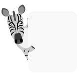 Zebra banner Stock Images