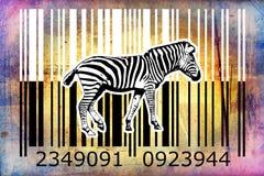 Zebra barcode animal design art idea Stock Photo