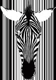 Zebra Barcode Face Stock Image
