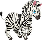 Zebra. Beautiful small zebra on a white background stock illustration