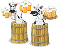 Zebra with beer jar Stock Images