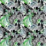 Zebra bezszwowy wzór tropikalna natury akwareli ilustracja Obrazy Stock