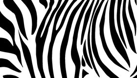 Zebra Black And White Pattern Royalty Free Stock Images