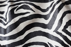 Zebra Black and White Texture Stock Photo
