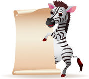 Zebra with blank scroll paper Royalty Free Stock Image