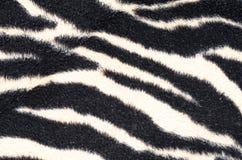 Zebra blanket Stock Photography