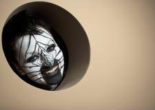 Zebra bloccata Fotografie Stock