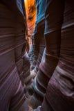 Zebra Canyon Grand Staircase. Escalante Utah royalty free stock photography