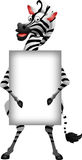 Zebra cartoon with blank sign Stock Images