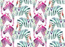 Zebra che dipinge fondo senza cuciture Fotografie Stock Libere da Diritti