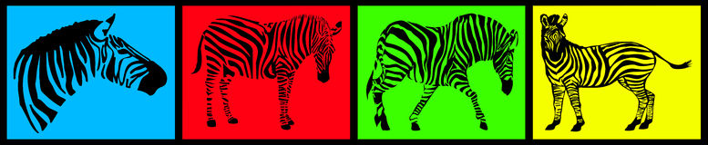 Zebra collection Royalty Free Stock Image