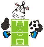Zebra con un pallone da calcio Fotografie Stock Libere da Diritti