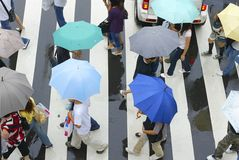Zebra crossing. Pedestrians with colorful umbrellas cross the Stock Photo