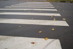 Zebra Crossing Royalty Free Stock Photo