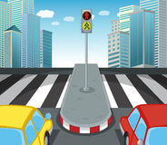 Free Zebra Crossing On The Road Stock Photography - 68664192