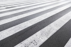 Zebra crossing painted on asphalt Stock Image