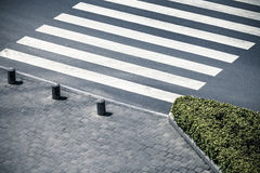 Zebra crossing by top view Stock Image