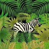 Zebra in de wildernis Tropische Bladeren Royalty-vrije Stock Afbeelding