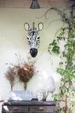 Zebra Decor. Zebra on the wall make the different mood decor Stock Image