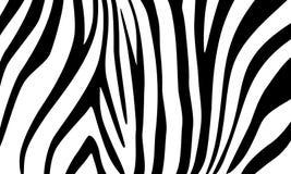 Zebra Dekorativer Hintergrund für Auslegung Lizenzfreies Stockbild