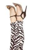 Zebra delle gambe della donna in talloni Fotografia Stock
