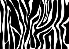 Zebra design. Abstract zebra illustration - background design Stock Photography