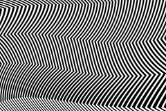 Zebra Design Black and White Stripes Vector Royalty Free Stock Image