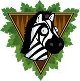 Zebra di safari Fotografie Stock