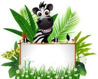 Zebra divertente con il segno in bianco Fotografia Stock Libera da Diritti
