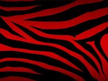 Zebra do vetor no vermelho Fotografia de Stock