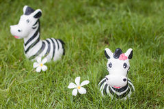 Zebra doll on the grass Stock Photography