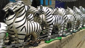 Zebra dolls Stock Photo