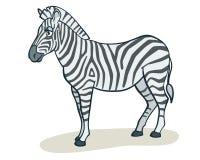 Zebra dos desenhos animados Fotos de Stock Royalty Free