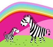 Zebra due Immagini Stock
