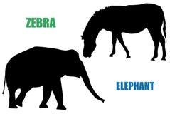 Zebra e elefante ilustração royalty free