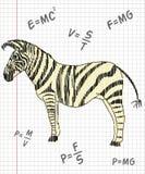 Zebra in een schoolnotitieboekje Stock Fotografie