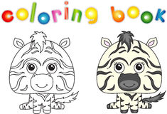 Zebra engraçada e bonito Imagens de Stock Royalty Free