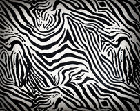 Zebra Fabric Background Royalty Free Stock Photo