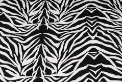 Zebra fabric texture background Royalty Free Stock Image