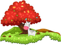 Zebra in fantasy jungle Stock Images